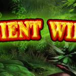 Ancient Wilds - Novoline Spiel - Logo.png