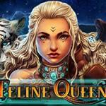 Feline Queen online spielen.jpg