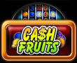Cash Fruits Merkur My Top Game