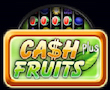 Cash Fruits Plus Merkur My Top Game