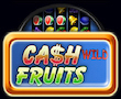 Cash Fruits Wild Merkur My Top Game
