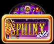 Sphinx Wild Merkur My Top Game