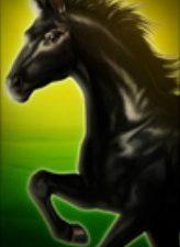 Schwarzes Pferd Spring Queen